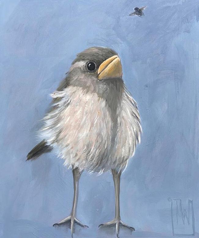 birdies #3 -50x60 - olie op doek