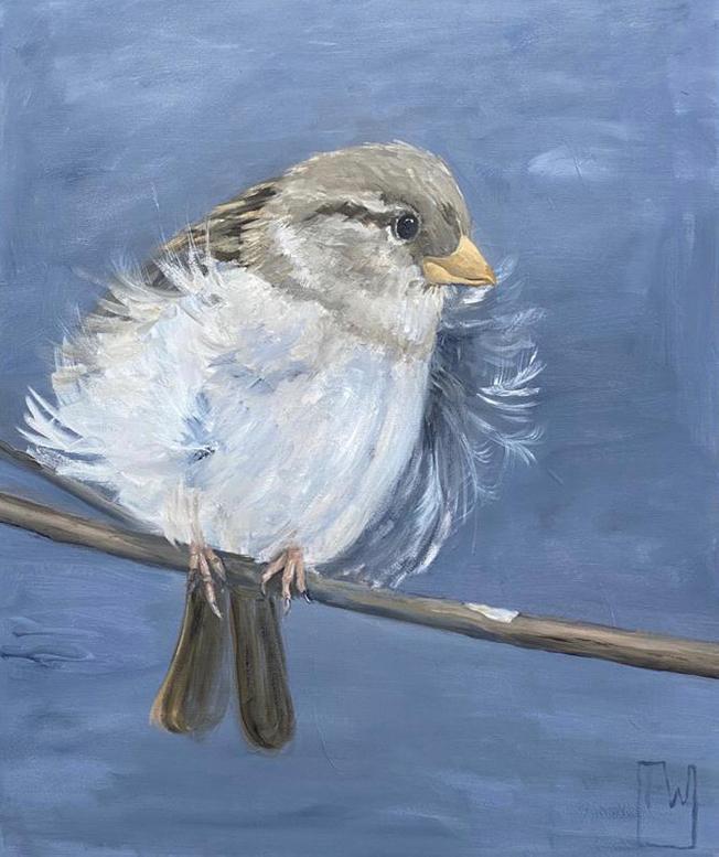 birdies #5 -50x60 - olie op doek